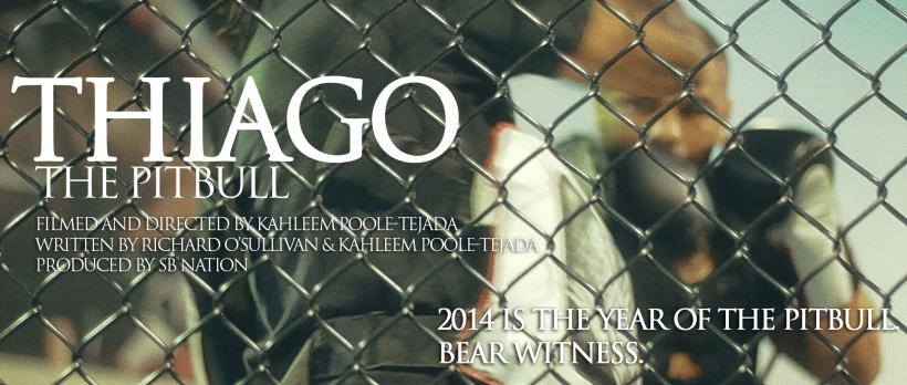 THIAGO poster image